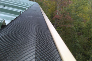 AlexSeamlessGutters_Services_LeafGuardsHomePage2_300px